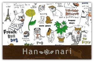 han_nari