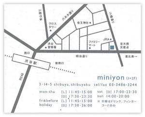 miniyon4