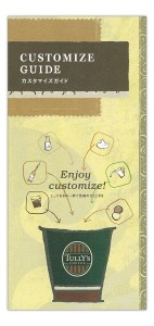 customize_guide