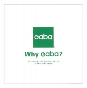 gaba1