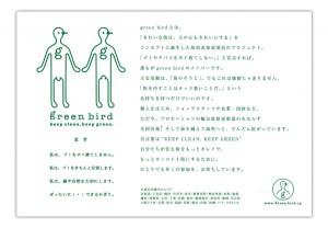 green_bird3