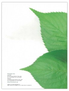 greenscape2