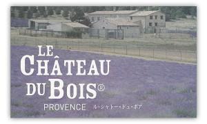 le_chateau_du_bois